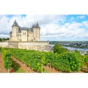 Loire Valley (4)